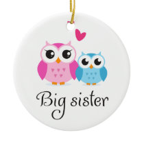 Cute owls big sister little brother cartoon ceramic ornament