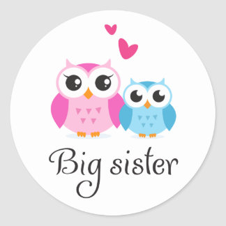 Cute owls big sister little brother cartoon round sticker