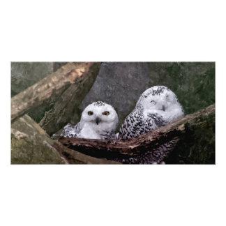 Cute Owls Card