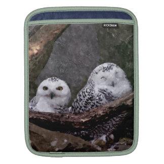 Cute Owls iPad Sleeve