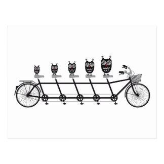 cute owls on tandem bicycle postcard