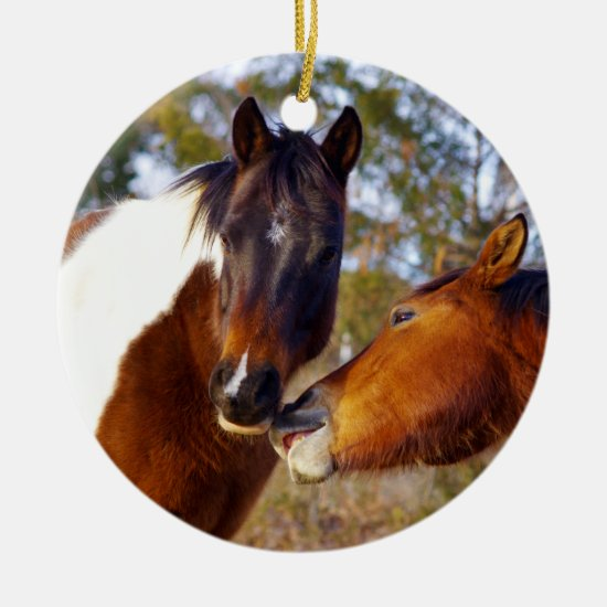 Cute Paint Horse Christmas Ornament