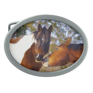 Cute Paint Horse Oval Belt Buckle