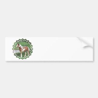 Cute Paint Pony Bumper Stickers