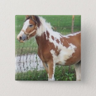 Cute Paint Pony Pin