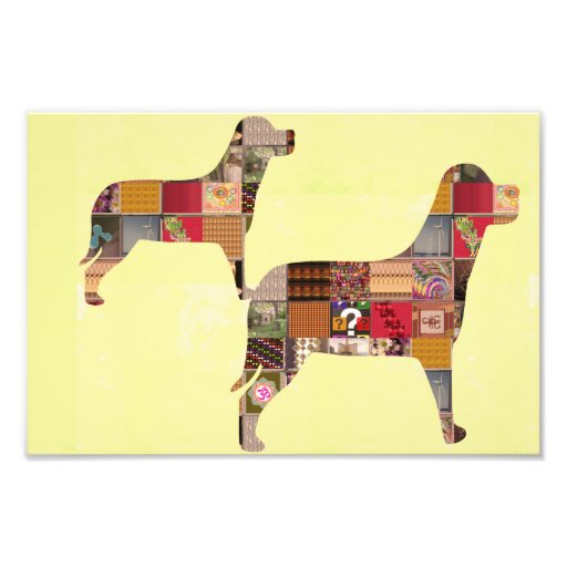 CUTE Painted Dogs Fun Gift Birthday House Photo Art