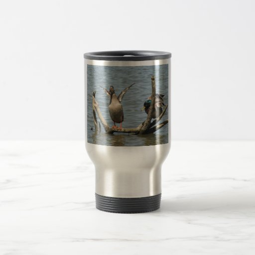 Cute Pair On Ducks Sitting With Open Wings On The Coffee Mug