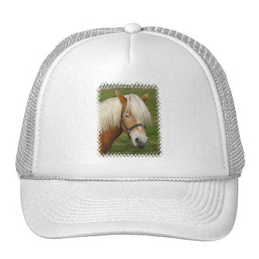 Cute Palomino Pony  Baseball Hat