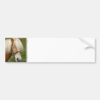 Cute Palomino Pony Bumper Stickers