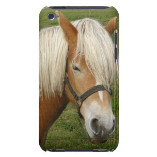 Cute Palomino Pony iTouch Case iPod Touch Covers