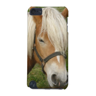 Cute Palomino Pony iTouch Case iPod Touch 5G Cases