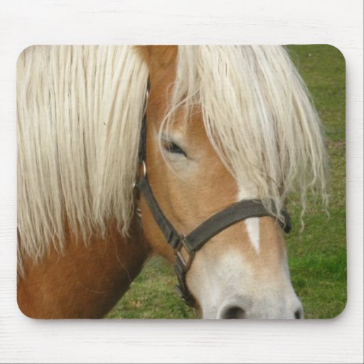 Cute Palomino Pony  Mouse Pads