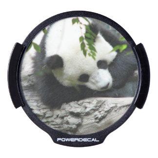 Cute Panda Bear LED Car Window Decal