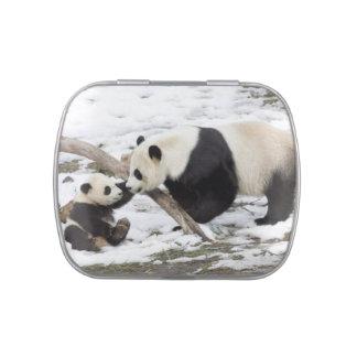Cute Panda Bears Peace Love Party Destiny Digital Jelly Belly Tins