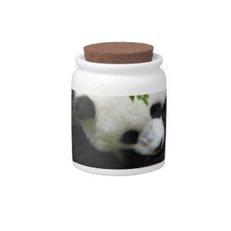 Cute Panda Candy Jar