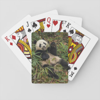 Cute Panda Eating Bamboo Playing Cards