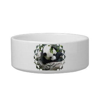 Cute Panda Pet Bowl