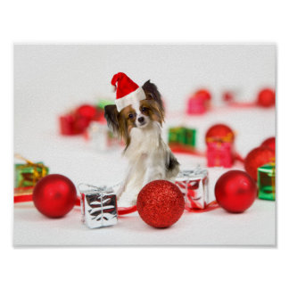 Cute Papillon Dog Christmas Santa Hat Poster