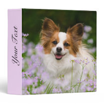 Cute Papillon Spaniel Head Photo for Dog Lovers - 3 Ring Binder