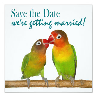 Cute Parrot Love Birds Tropical Save the Date 5.25x5.25 Square Paper Invitation Card
