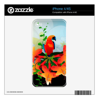 Cute parrot skin for the iPhone 4