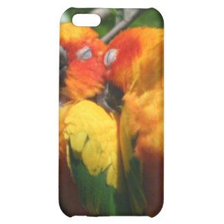 Cute Parrots Snuggling iPhone 4/4S Case
