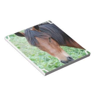 Cute Paso Fino Horse Notepad