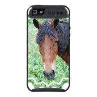 Cute Paso Fino iPhone 4 Case