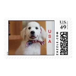 Cute patriotic dog postage stamp