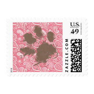 Cute Pawprint on Blush Pink Paisley Postage