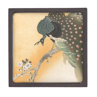 Cute peacock gift box