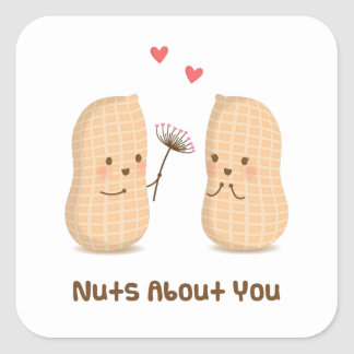 Cute Peanuts Nuts About You Pun Love Humor Square Sticker