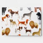 Cute Pedigree Pet Dog Wallpaper Design Envelope