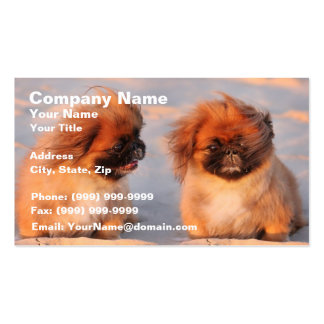 Cute Pekingese Dogs Double-Sided Standard Business Cards (Pack Of 100)