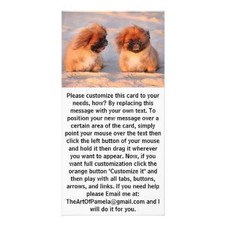 Cute Pekingese Dogs Card