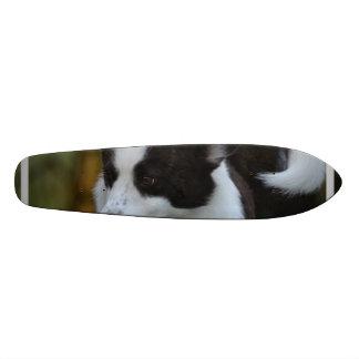 Cute Pembroke Corgi Custom Skateboard