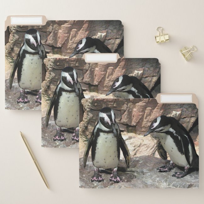 Cute Penguin Birds File Folder Set