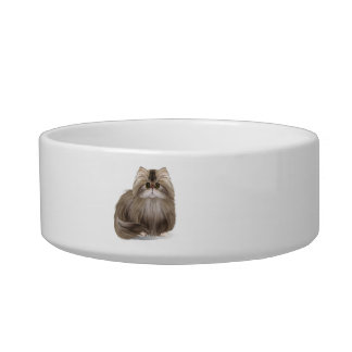 Cute Persian Kitty Pet Bowl