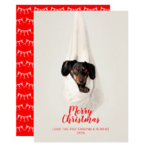 Cute Pet Family Puppy Dog Christmas Photo Invitation