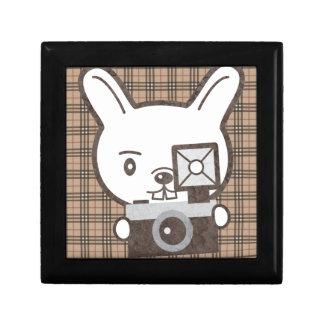 Cute Photographer Rabbit Jewelry Box