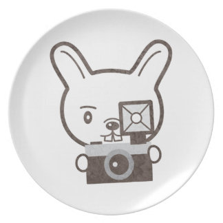 Cute Photographer Rabbit Party Plate