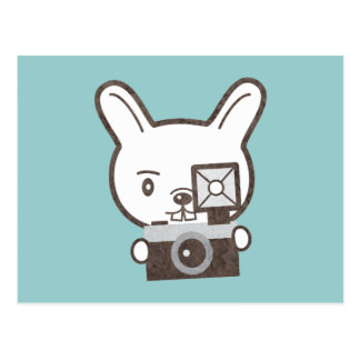 Cute Photographer Rabbit Postcard