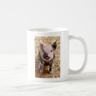 Cute Pic of a baby Pig Mug
