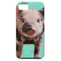Cute Pig - Blue & Pink Swirls Cover For iPhone 5/5S