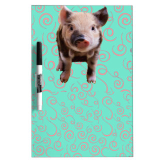 Cute Pig - Blue & Pink Swirls Dry-Erase Board