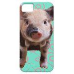 Cute Pig - Blue & Pink Swirls iPhone 5 Case