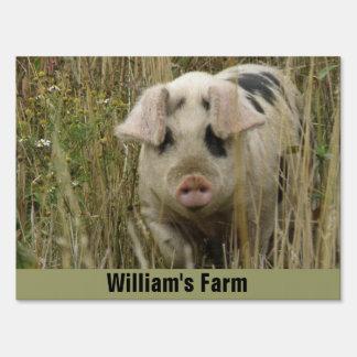 Cute Pig Custom Farm Sign