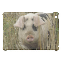 Cute Pig  iPad Mini Cover