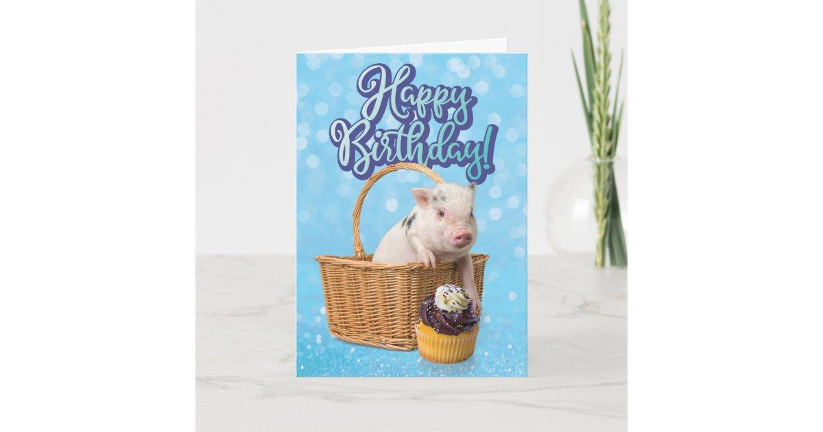 Cute Pig Pigging Out Birthday Card   Zazzle.com