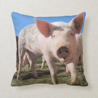 Cute Pig Pillow